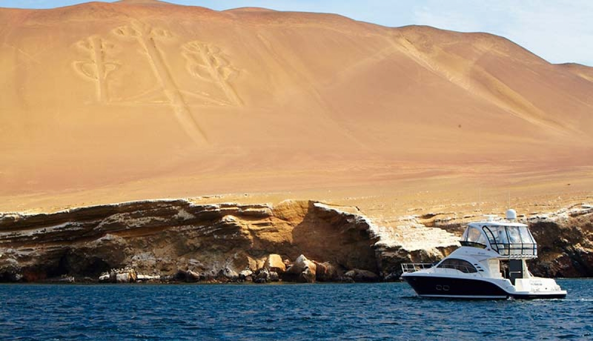 Paracas Reserve & Ballestas Islands
